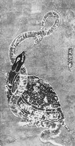 schildpad-en-slang
